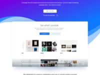 Landing Page Ads