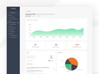User Overview Dashboard / Analytics UI