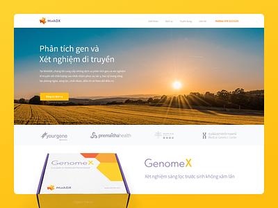 Mind DX website vietnam uidesign diagnostics logo packaging gene chemistry medical website branding and identity branding
