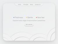 Neumorphism WEB