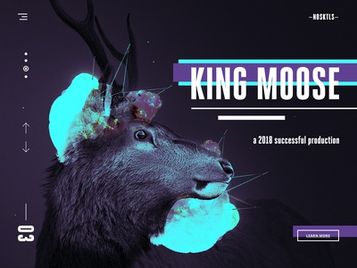 no-skittles-landing-page-concept-ux-ui-design-product-dribbble-full-king-moose.jpg