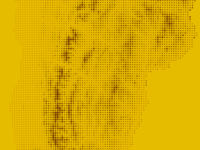 Dot Size as Topography