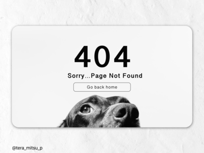 Daily UI Challenge #008 404page