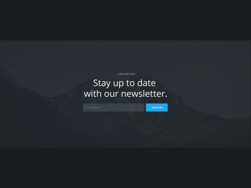 Newsletter Section subscribe newsletter ui section