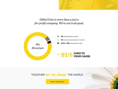Gifted Coin - Crowd Funding sketch app crowd funding webdesign website