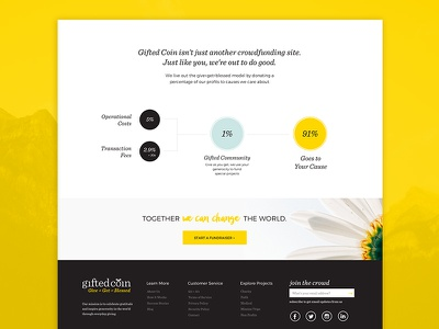 Gifted Coin - Crowd Funding inforgraphic sketch app crowd funding webdesign website