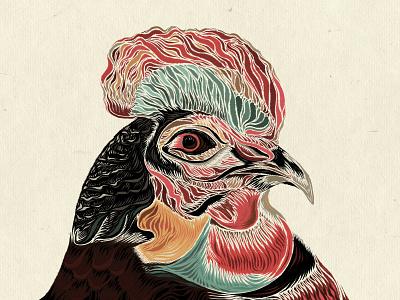 Fowl Mood bird illustration portraitart portrait adobe painting texture photoshop art photoshop digitalpainting digitaldrawing digitalart illustrator illustraion bird fowl