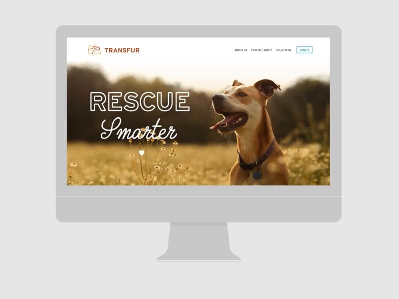 Transfur.org heart dogs transfur createathon columbia sc dog rescue website web design