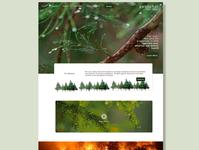Petrichor NGO website (1)