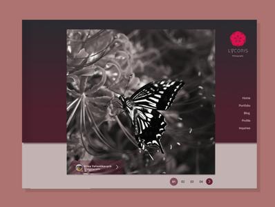 Lycoris (Photography Website Design)