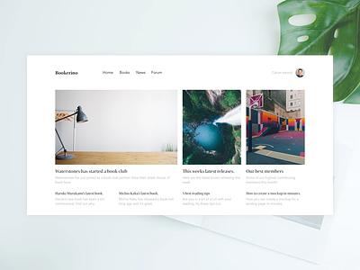 Bookerino Site Design books website minimal ux ui