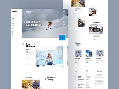 Snowbird Home Page website web design site concept creative direction art direction interface ux rally interactive design ui