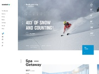Snowbird rally home page