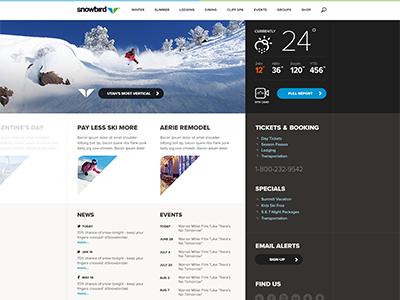 Snowbird site sneak peek rally interactive website site design ui interface ux web design