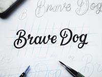 Brave Dog Logo Sketch