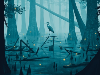 A Hidden Stillness nicholas moegly fireflies lightning bugs abandoned forest woods mississippi night water turtle alligator heron swamp