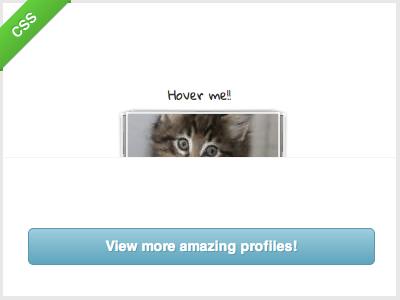 Profile Views [CSS] rebound loupe shot css kitten placekitten thumbnails animation transform