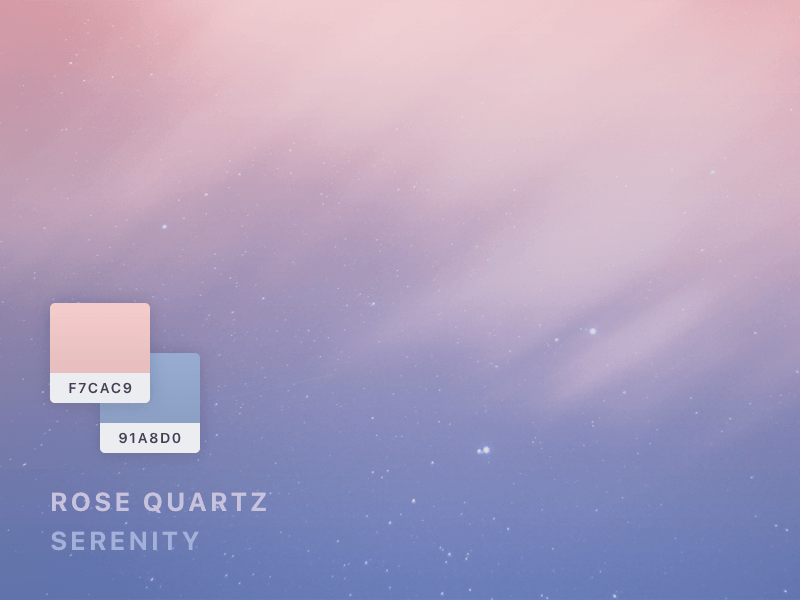 rose quartz serenity by desix creative dribbble. Black Bedroom Furniture Sets. Home Design Ideas