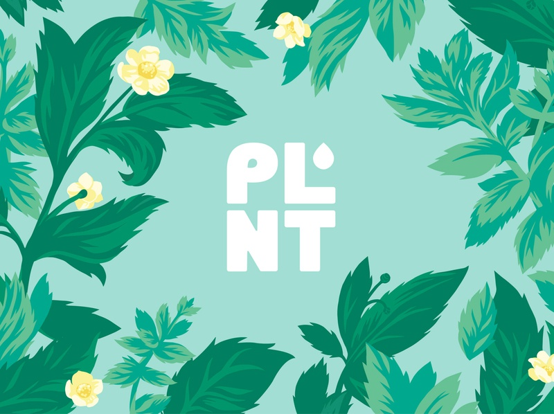 Plnt Water Botanical Illustration