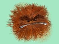 Hairball
