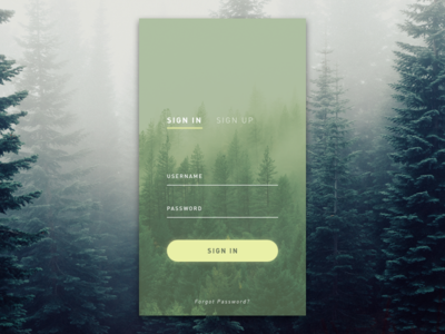 Daily UI Challenge #01 Sign In/Sign Up