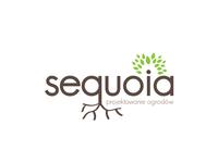 Sequoia - garden design
