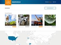 Marigold Dashboard - Project thumbnails