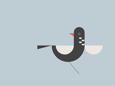 Bird poster icon blue illustration texture color print vintage bird