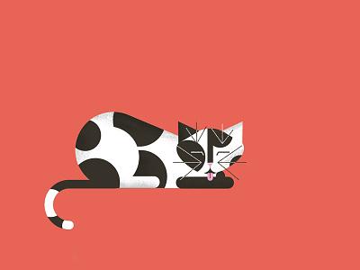 Cat modern vintage feline texture cute illustration design cat