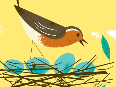 British robin