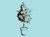 Lemon Geranium Stipple