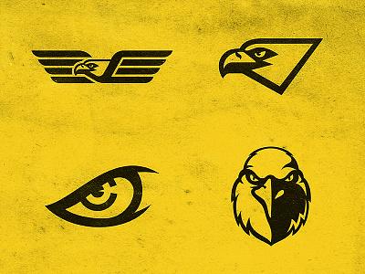Eagle Concept eagles logo team head sports mascot stare mascot beak wings eye eagle