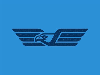 Eagle ecommerce united states america usa soar beak wing eye blue photoshop illustrator fly sports logo logo mascot