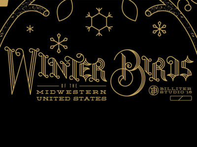 Type Design inspired by engravings