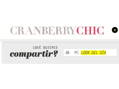 Fashion website toolbar