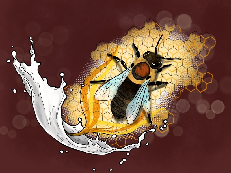Milk and Honey procreate editorial art illustration