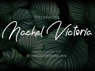 The Nachel Victoria Beautiful typeface font Free