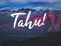 Tahu Clean and professional Font Free