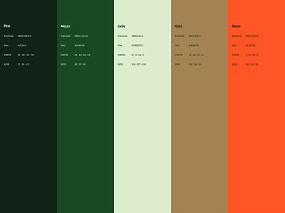 Color Me Adventurous color palette brand design branding case study guidelines design strategy branding agency brand identity branding and identity brand strategy brand experience color