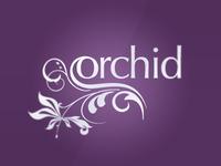 Orchid Indulgence