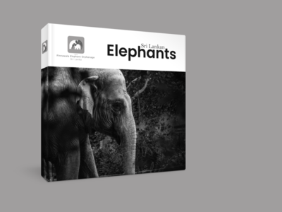 Concept logo design for Pinnawala Elephant Orphanage, Sri Lanka