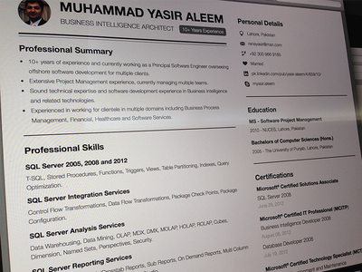 resume business intelligence architect by asif aleem dribbble