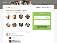 Names 4 Dogs - Product Design