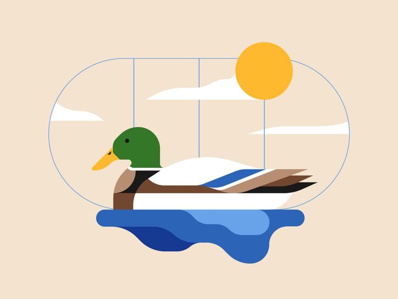 Mallard nature illustration animal animal illustration duck illustrator illustration