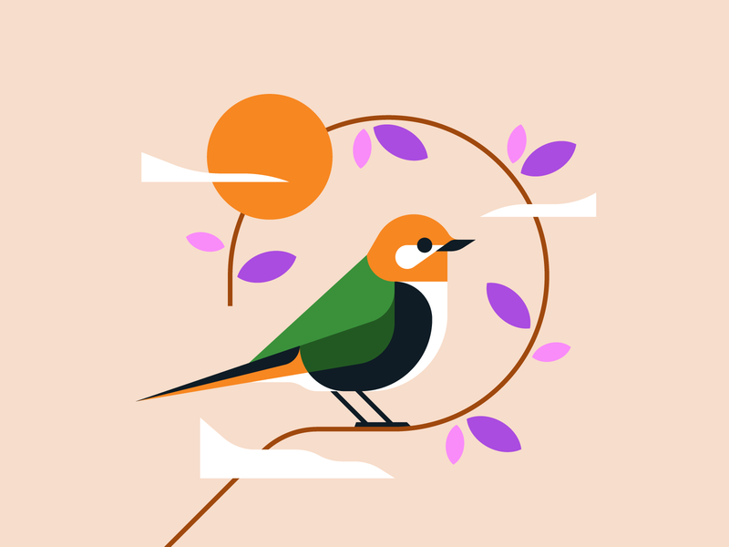Spring nature animal illustration bird illustrator illustration