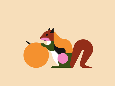 Squirrel vector illustrator illustration geometric nature illustration animal illustration animals squirrel