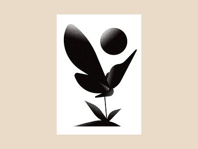 Butterfly design illustrator drawing illustration