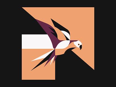 Parrot geometric pattern illustrator illustration animal bird parrot