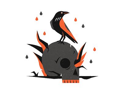 Corvus nature illustrator illustration texture animal bird skull crow