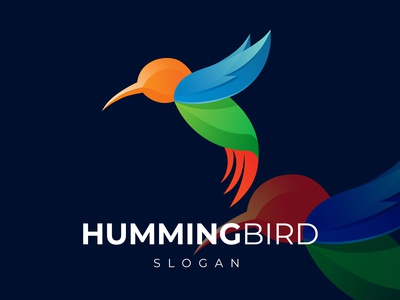 Abstract Colorful Hummingbird Logo